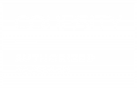 COHESITY Authorized Partner